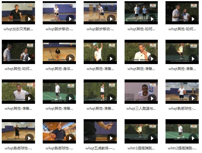《新手入大神打篮球全套教程》百度网盘下载