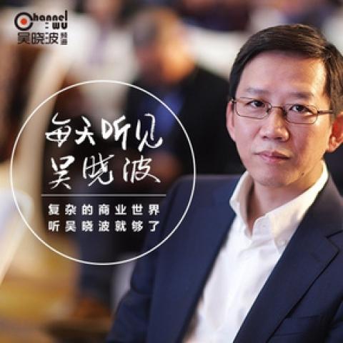 《每天听见吴晓波 2016.7~2017.7》百度网盘下载